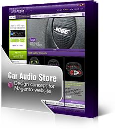 Car Audio Store